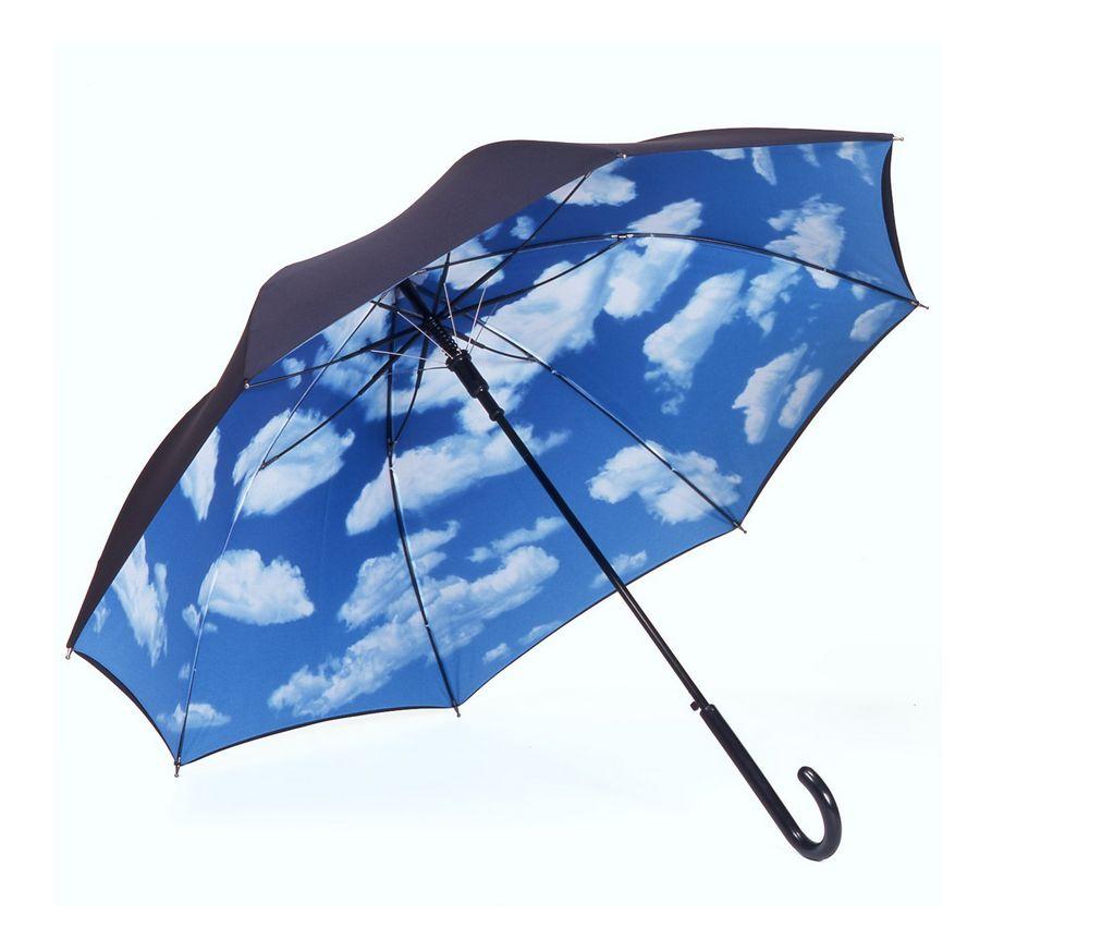 稲葉浩志さんが会報vol.106で持っていた傘とは??